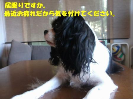 05_convert_20161020185347.jpg