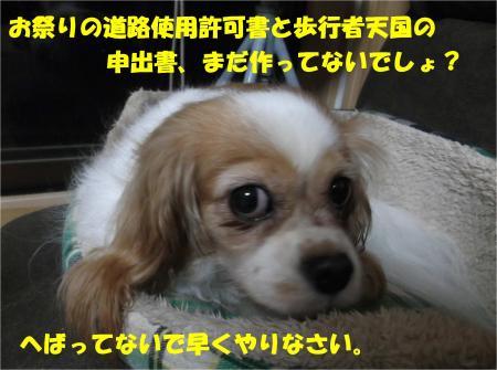 06_convert_20161003185007.jpg