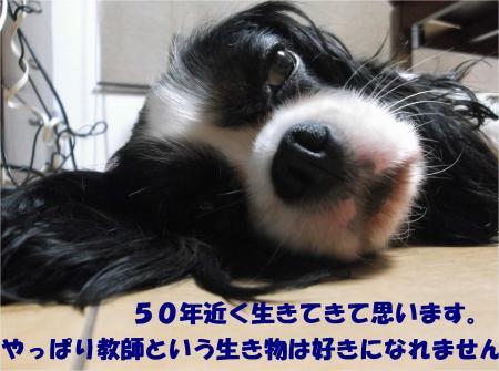 06_convert_20161005180750.jpg