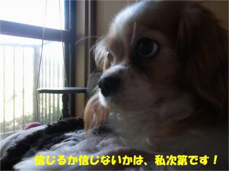 06_convert_20161020185357.jpg