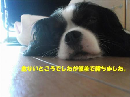 07_convert_20160704175623.jpg