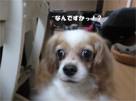 0_convert_20160706175700.jpg