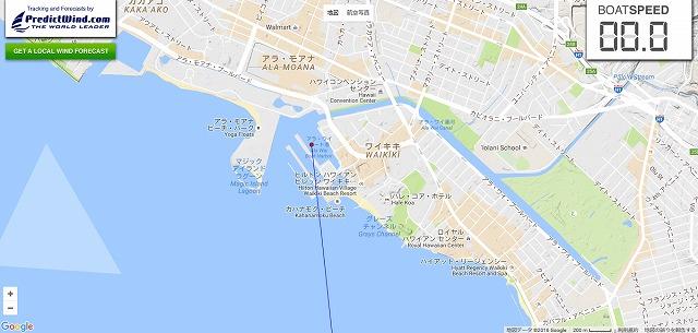 カモメ-ハワイ到着トリム済
