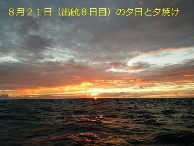 31. DSC_1242