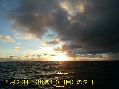 36. DSC_1379