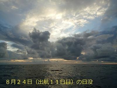 41. DSC_1393