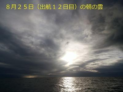 46. DSC_1433