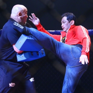 仙人 野村貴仁氏が格闘家に転身 見事なハイキックを披露www