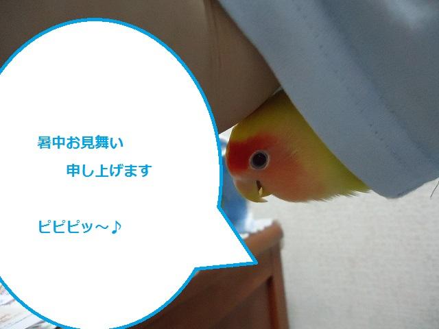 ちち280516 (17)