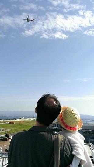 関空飛行機をみる