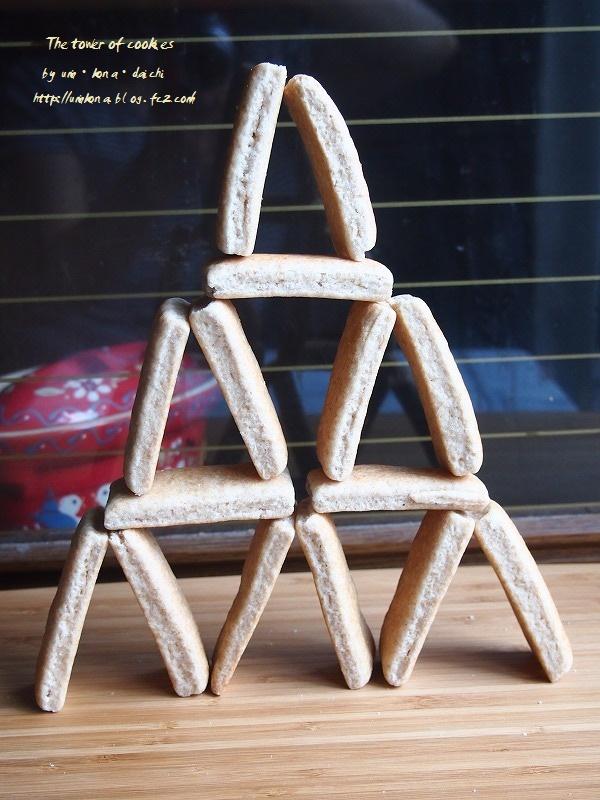 酵母のクッキータワー 1