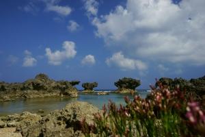 ウジジ浜1