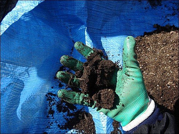 03-用土の湿り具合