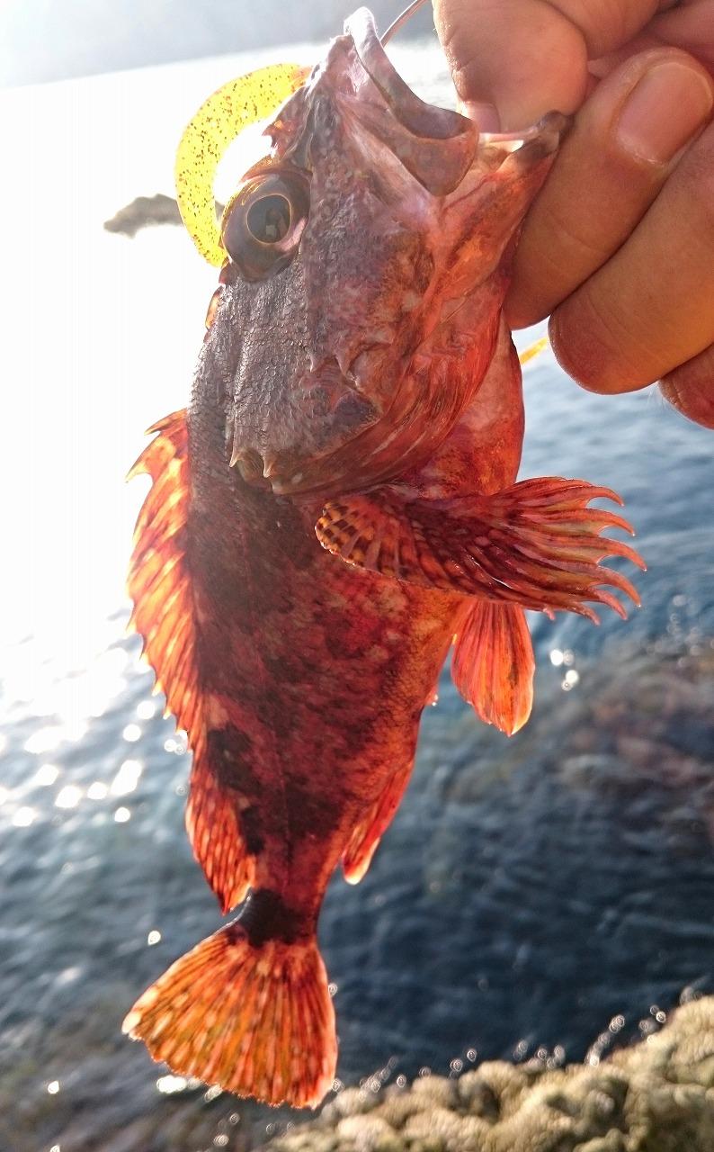 20160730-Fishing-X08.jpg