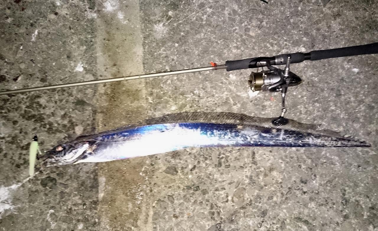 20160805-Fishing-X04.jpg