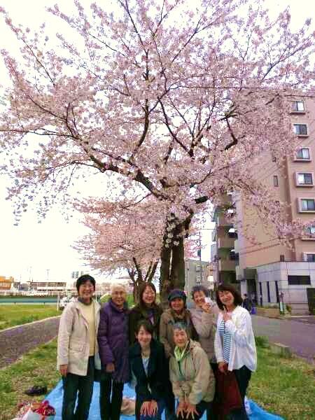 お花見富沢3