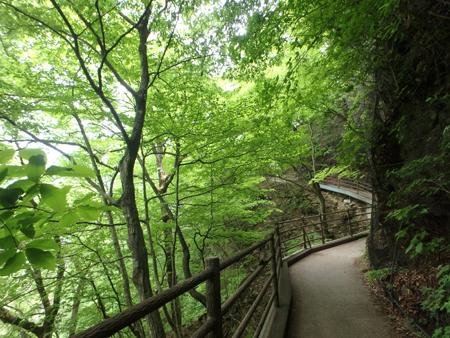 28_05_16 吹割の滝 5