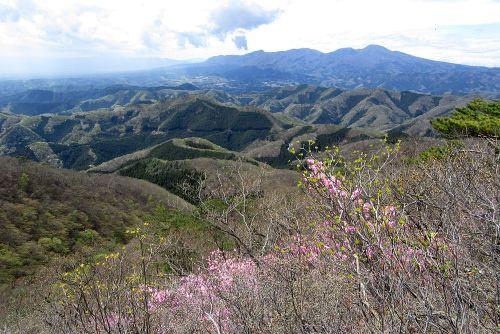 赤城山とアカヤシオ