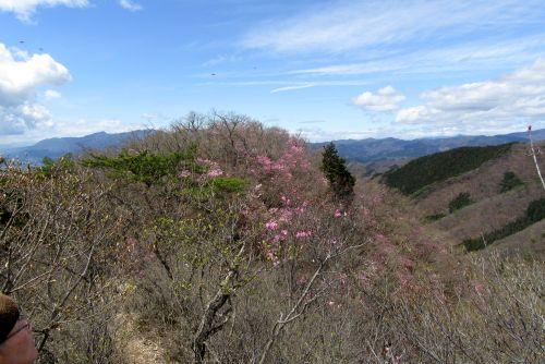 鳴神山からの展望