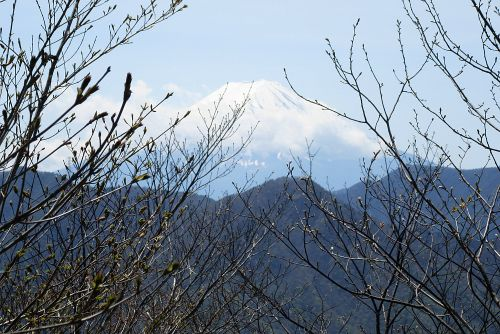 間近な富士山