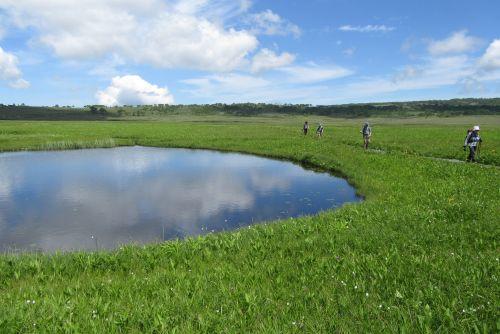 広い湿原を行く