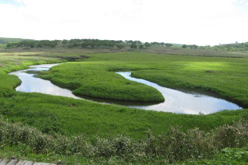 大きく蛇行する川