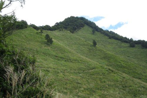 高座山と草原