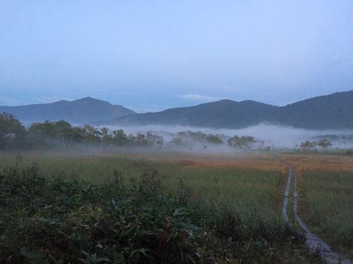 朝もやの尾瀬ヶ原