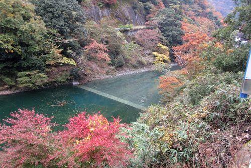 玄倉川の紅葉