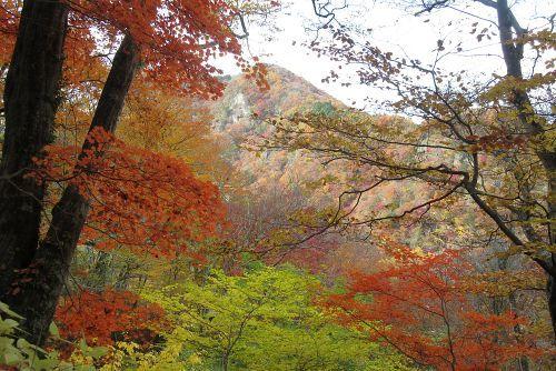 紅葉と生瀬富士