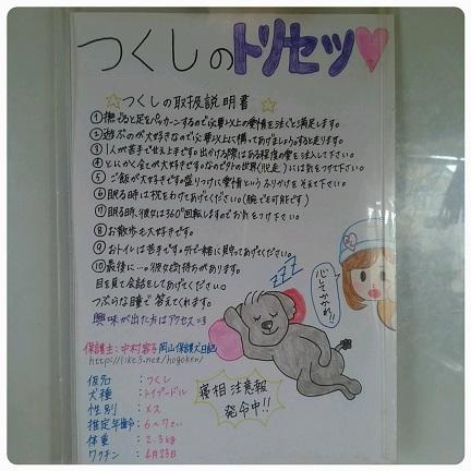 20160609_103311.jpg