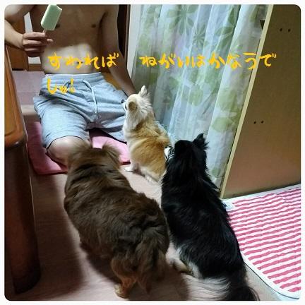 20160711_203620.jpg