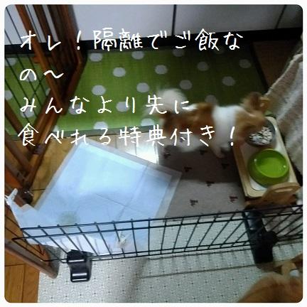 20160829_073810.jpg