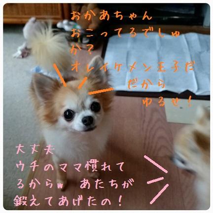20160901_065940.jpg