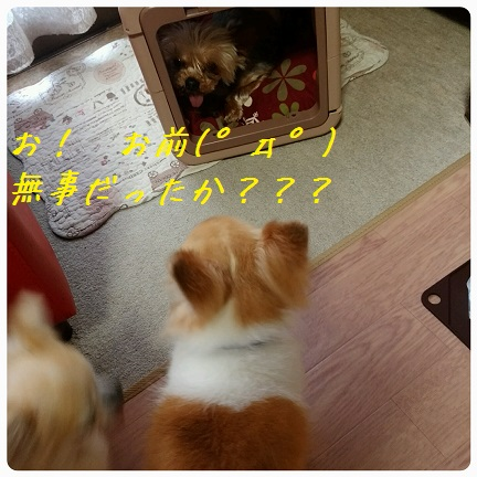20160913_174417.jpg