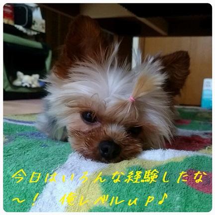 20160923_091046.jpg