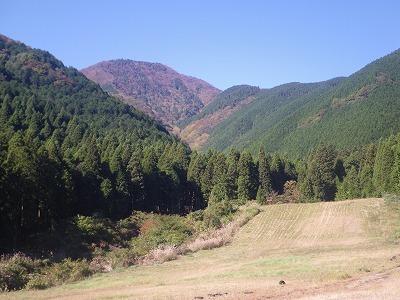 林道から天子ヶ岳