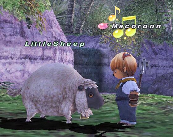 子羊0504