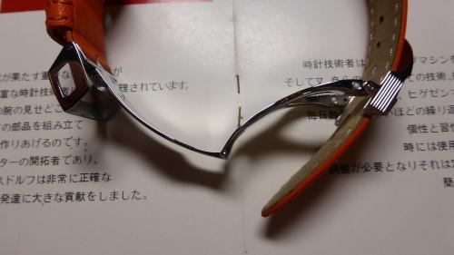 P1100654.jpg