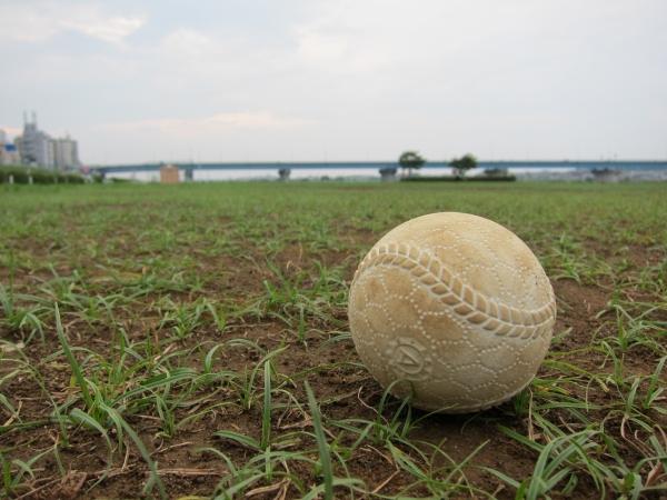 梨田、ついにブチギレwwwwwwwwwwwwww そうだ、野球をみよう
