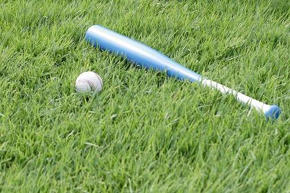 高校生ワイ(16)「野球部の応援に行くとか面倒くせぇ」 そうだ、野球をみよう
