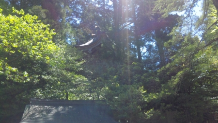天川神社6