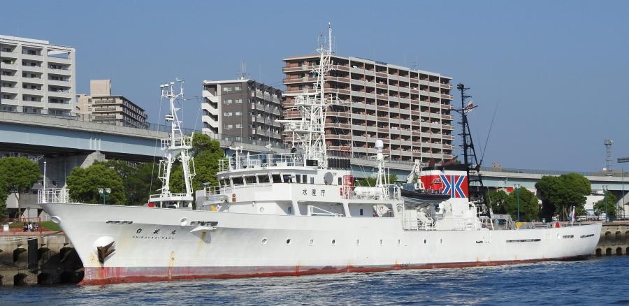 DSCN4644 (1)0001