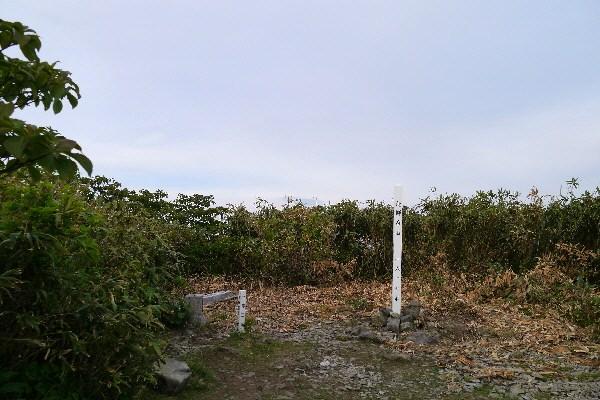 P1040390(1).jpg
