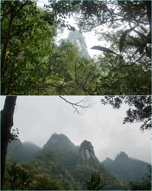 016 巨岩の丘