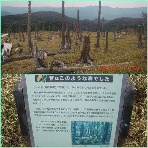 022 正木峠