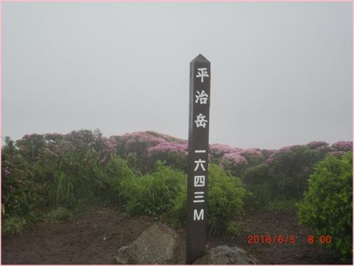 016 山頂