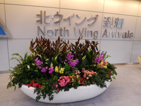 シンガポール2016.3成田空港