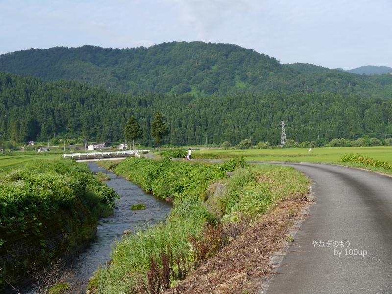 2016年8月12日撮影 新潟県
