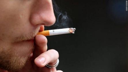 タバコを擬人化した漫画がヤングチャンピオンで始まるwwww